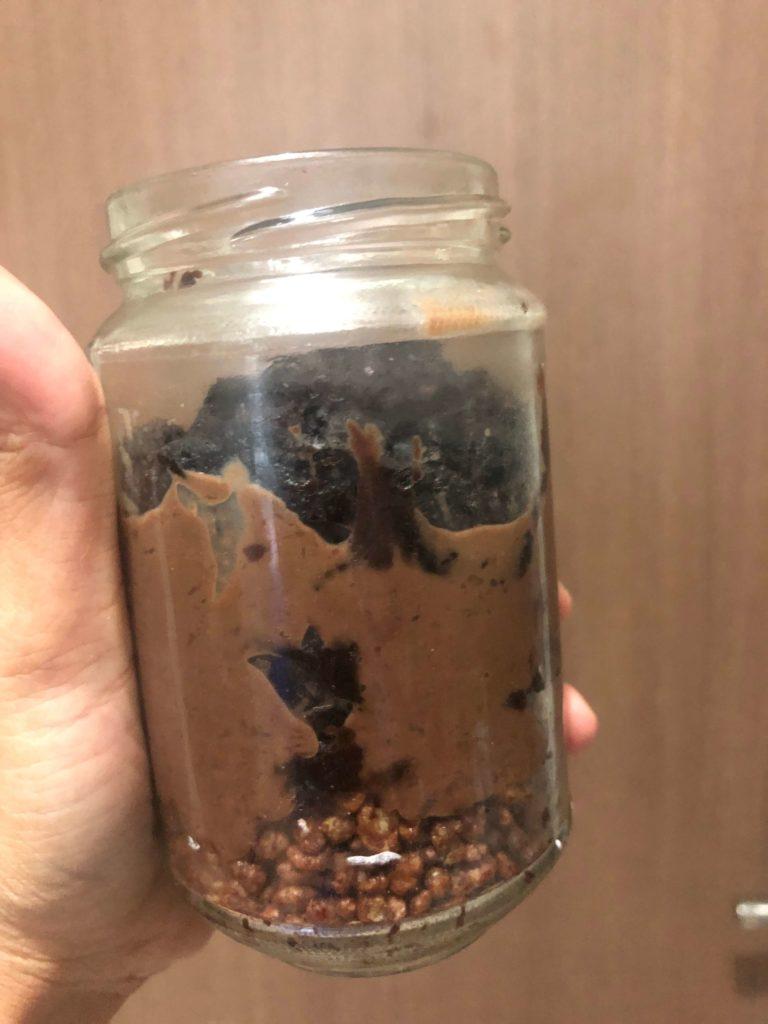 Cara Membuat Oreo Chocolate Dessert
